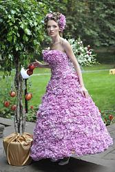 Платья из цветов-11838_640-jpg