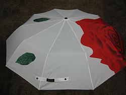 Зонтики, все о них.-modnye_genskie_zonty_foto_65-jpg