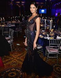 amfAR New York Gala 2014-barbara-fialo-1-jpg
