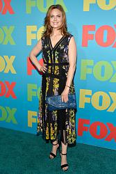 FOX Programming Presentation 2013-emily-deschanel-fox-programming-presentation-jdnjhtiwpsnl-jpg