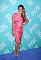 FOX Programming Presentation 2013-fox-programming-presentation-2013-jpg