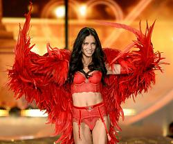 Victoria's Secret Fashion Show 2013 продолжение:)-victorias-secret-fashion-show-2013-1-jpg