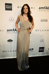 amfAR New York Gala 2014-mishel-rodriges-1-jpg