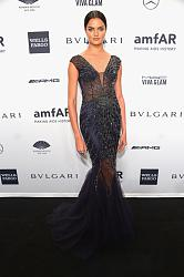 amfAR New York Gala 2014-barbara-fialo-jpg